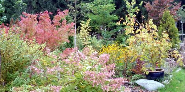 Herbstfarben zum Narrischwerden