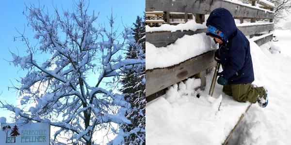 Baumschule Fellner: Winterpause 2017/2018